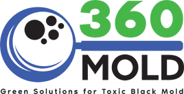 360Mold